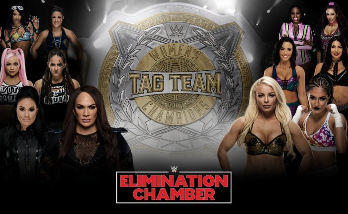 365 Wrestling, Day 48: Women's Tag Elimination Chamber (WWE,2/17/19)